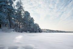 Bevroren rivier bij bos in de mooie winter Royalty-vrije Stock Afbeelding