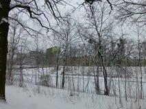 Bevroren rivier in de stad stock afbeeldingen