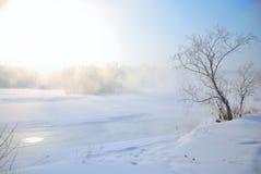 Bevroren rivier en eenzame boom bij recht Stock Foto