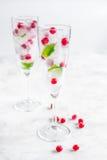 Bevroren rode bessen in ijsblokjes met munt in glazen op steenachtergrond Stock Foto's