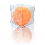 Bevroren sinaasappel Royalty-vrije Stock Foto's