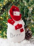 Bevroren sneeuwman Royalty-vrije Stock Foto