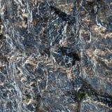 Bevroren steen Royalty-vrije Stock Afbeelding