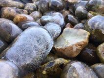 Bevroren stenen Stock Foto's