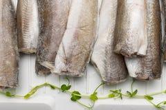 Bevroren stokvissenvissen Stock Afbeelding