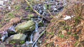 Bevroren stromende waterval in de bergen van wasserfall, Bestwig, Duitsland stock video