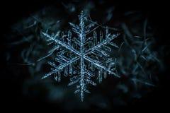 Bevroren symmetrie van de sneeuwvlok de macroclose-up stock foto's