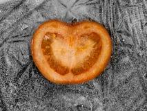 Bevroren tomaat Stock Afbeeldingen