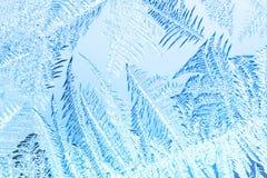 Bevroren venster Stock Afbeeldingen