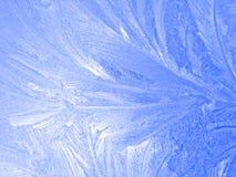 Bevroren venster Stock Foto's