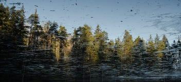 Bevroren vijver met bezinning Royalty-vrije Stock Afbeelding