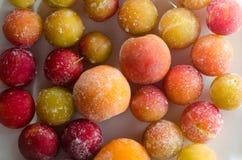 Bevroren vruchten Royalty-vrije Stock Afbeelding