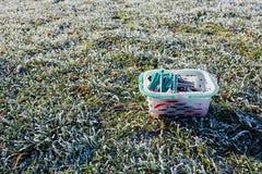 Bevroren wasknijper op gras met bladeren Stock Fotografie