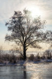 Bevroren Water, Sneeuw en Ijs op de Dnieper-Rivier stock foto's
