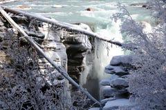 Bevroren waterval met gevallen die bomen door ijs worden behandeld Royalty-vrije Stock Foto's