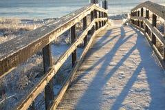 Bevroren weg aan de oceaan stock afbeelding