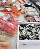 Bevroren zeevruchten en vissen op ijs Stock Afbeeldingen