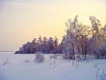 Bevroren zon stock afbeelding