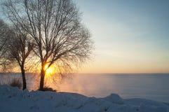 Bevroren zonsondergang Royalty-vrije Stock Foto