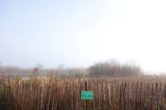 Bevuxen naturvårdsområde vid en sjö Royaltyfri Fotografi