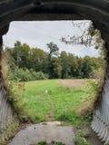 Bevuxen tunnelutgång arkivbilder