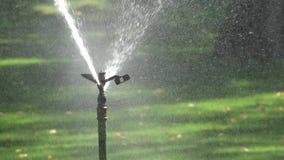 Bewässern Sie nasses grünes Gras des Systems, Agrarentwicklung stock video footage