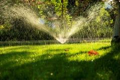 Bewässerung Stockfotografie