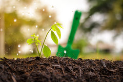 Bewässerung den Boden unfruchtbar lizenzfreie stockfotos