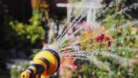 Bewässerung der manuellen Gartenberieselungsanlage des Blumengartens stock video