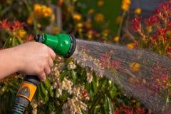 Bewässerung des Gartens lizenzfreies stockbild