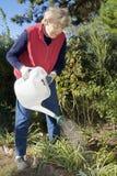 Bewässerung des Gartens stockfotografie