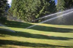 Bewässerung des Grüns Stockbilder
