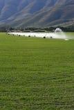 Bewässerung des Landes Stockbild