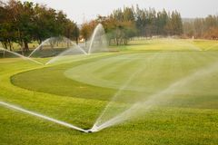 Bewässerung im Golfplatz Stockfotos