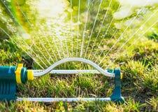 Bewässerung im Sommergarten mit Berieselungsanlage auf Grasrasenhintergrund lizenzfreie stockbilder