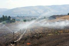 Bewässerung in Israel Stockfotografie