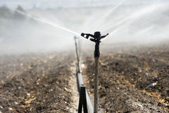 Bewässerung in Israel Lizenzfreies Stockfoto