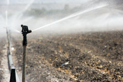 Bewässerung in Israel Stockbild