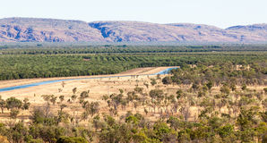 Bewässerung in Kununurra Stockfotografie