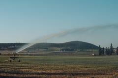 Bewässerung oder Landwirtschaft und Landwirtschaftskonzept Gelenkberieselungsanlagen-Spraywasser auf grünem Feld Bewässerungssyst stockfotos