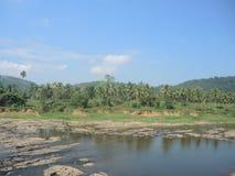 Bewässerung in Pinnawala Stockfotografie