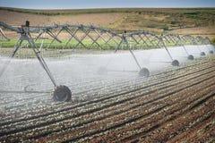 Bewässerung-Rad-Zeile Lizenzfreie Stockfotografie