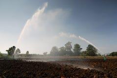 Bewässerung-Sprenger Stockfoto
