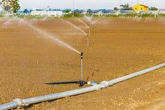 Bewässerung von bebauten Feldern Lizenzfreie Stockfotos