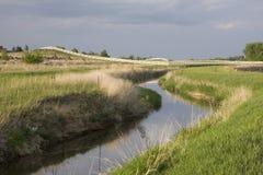 Bewässerungabzugsgraben, grüne Wiesen und Weide stockbild
