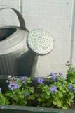 Bewässerungs-Dose Lizenzfreie Stockbilder