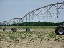 Bewässerungs-Systemanlagen Stockbild