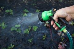 Bewässerungsanlagen Lizenzfreie Stockfotografie