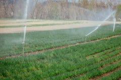 Bewässerungsbetriebssystem auf einem Feld, einer Landwirtschaft und Anlagen stockfotos