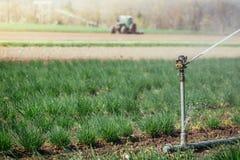 Bewässerungsbetriebssystem auf einem Feld, Landwirtschaft Traktor im undeutlichen Hintergrund stockfotografie